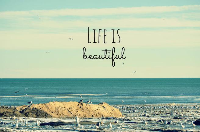275433-life-is-beautiful